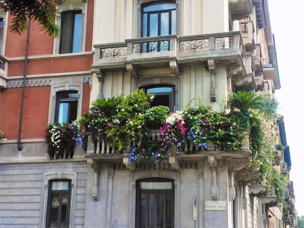 pequenos terraços.jpg2 (Copy)
