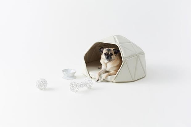 nendo-heads-or-tails-dog-accessories-designboom-03 (Copy)