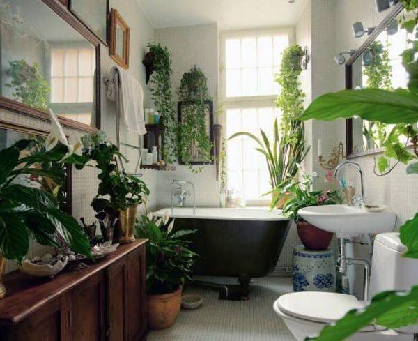 Quase uma floresta, este banheiro ficou super agradável!