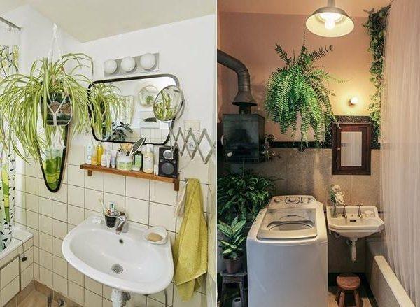 As plantas trouxeram graça e vida aos banheiros antigos.