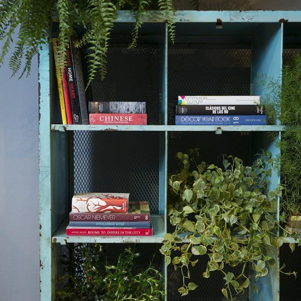 A estante turquesa da Verniz faz bonito sobre o fundo cinza e quebra no ato qualquer pretensão. Livros e plantas dividem democraticamente o espaço.