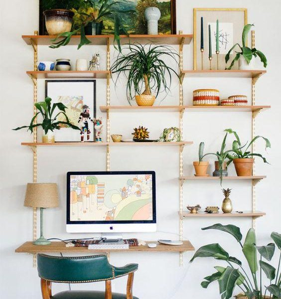 As plantas humanizam o espaço. Invista nesta ideia