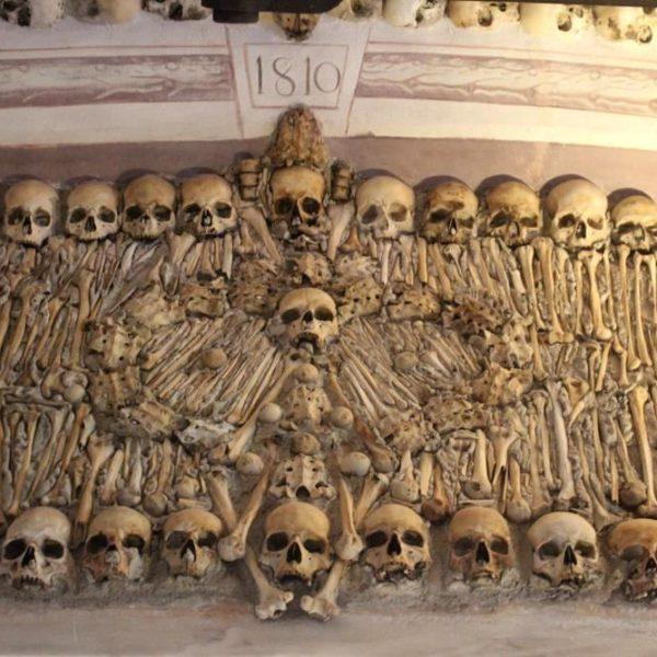 Mais de 5.000 ossadas estão reunidas no local