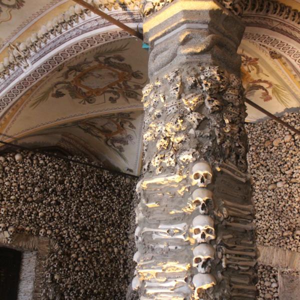 Colunas e paredes são forradas por ossos
