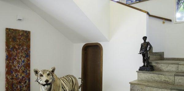 """Tigra, presente do presidente da Air France, que não tinha como levar a peça de volta para a França. Na escada, um painel de azulejos brancos e azuis.  """"O vendedor disse que a obra era do século 18. Não parece, mas achei lindo e escolhi acreditar"""", conta Alexandra"""