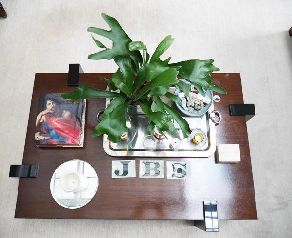 Plantas, uma das paixões do designer de interiores Brian Sawyer
