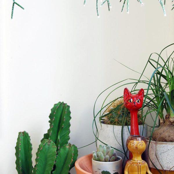 As plantas são uma outra paixão do casal, que já acumula mais de cem vasos