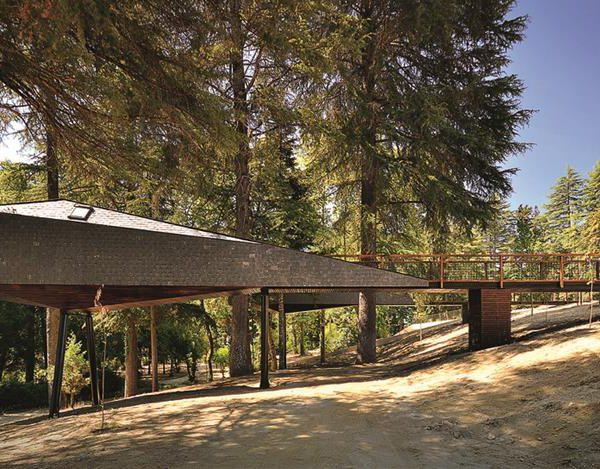 Tree Snake Houses, dos arquitetos Luís Rebelo de Andrade e Tiago Rebelo de Andrade, em Portugal