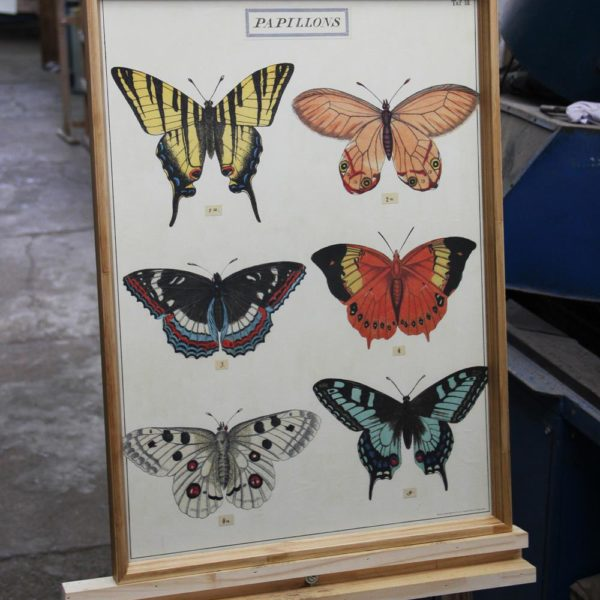 "Gravura ""Papillons"""