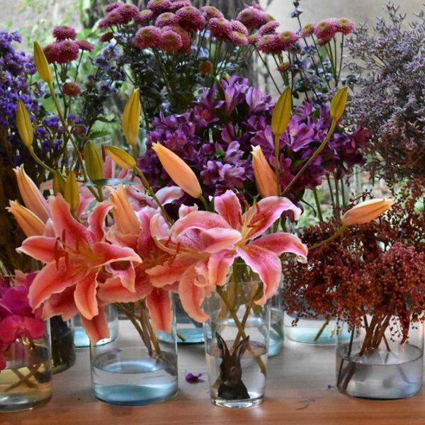 As plantas/flores estão com tudo