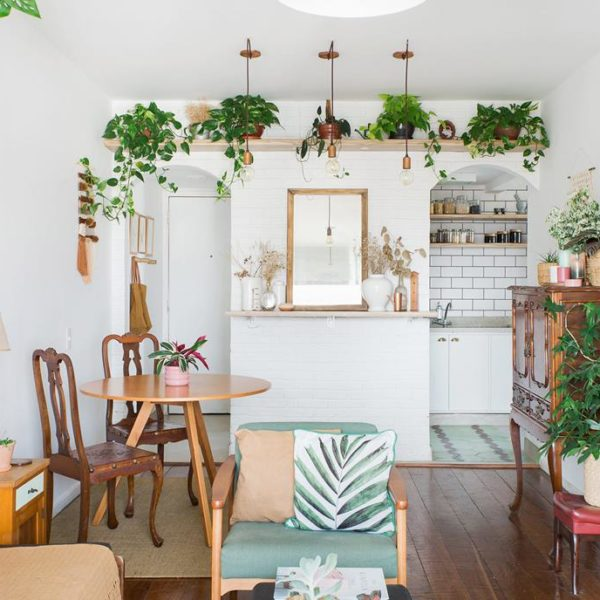 As plantas complementam a decoração