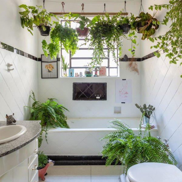 As plantas mudam o astral do banheiro comum. Invista na ideia