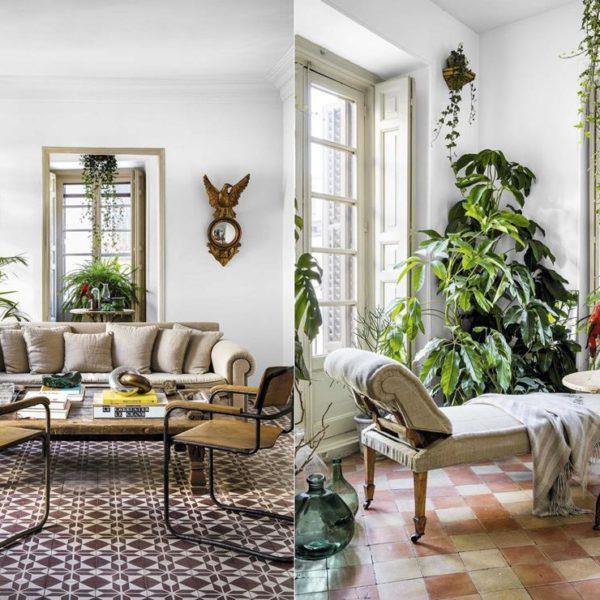 As paredes brancas dão ainda mais protagonismo à decoração e ao piso. A iluminação abundante é o que as plantas precisam!