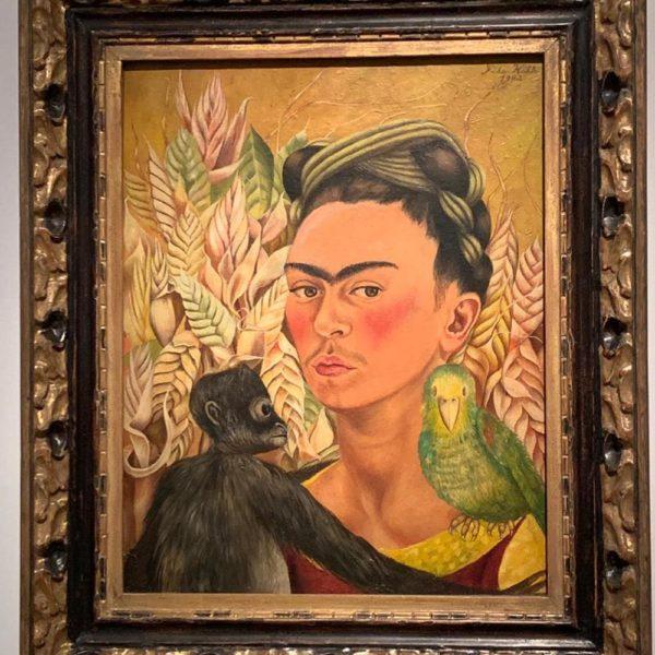 Frida Kahlo, maravilhosa