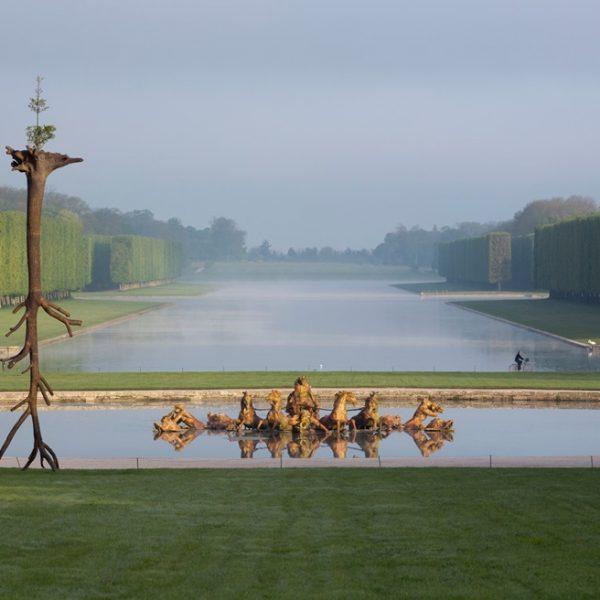 A cada verão, um artista contemporâneo instala uma obra em Versalhes. Em 2013, o artista italiano Giuseppe Penone instalou Le Foglie delle Radici em Bassin d'Apollon.